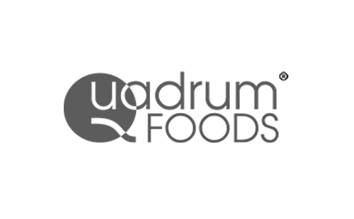 logo QUADRUM FOODS polish importer and exporter of fresh and frozen foods